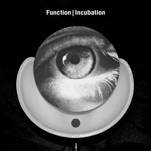 function.incubation.againstthesilence.wordpress.com