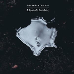 soundawakener&;inearbells.againstthesilence.com