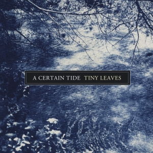 tinyleaves.a-certain-tide.againstthesilence.com