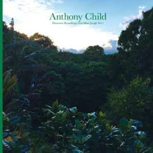 anthonychild.againstthesilence.com