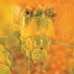 macrocosms.againstthesilence